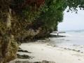 walking-along-the-shore-2